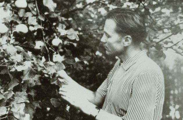 Vasilii Sukhomlinsky examines a tree.