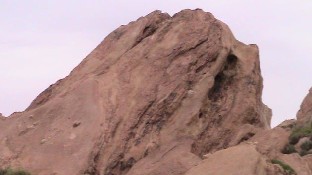 The top of a rock reveals some surprises