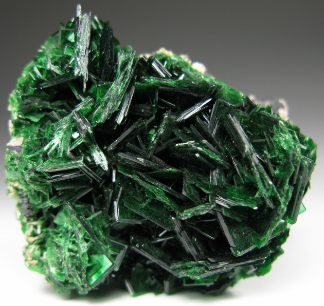 Torbernite_ bright cluster of green blade xls, Bete Noir, France. Photo by RC.